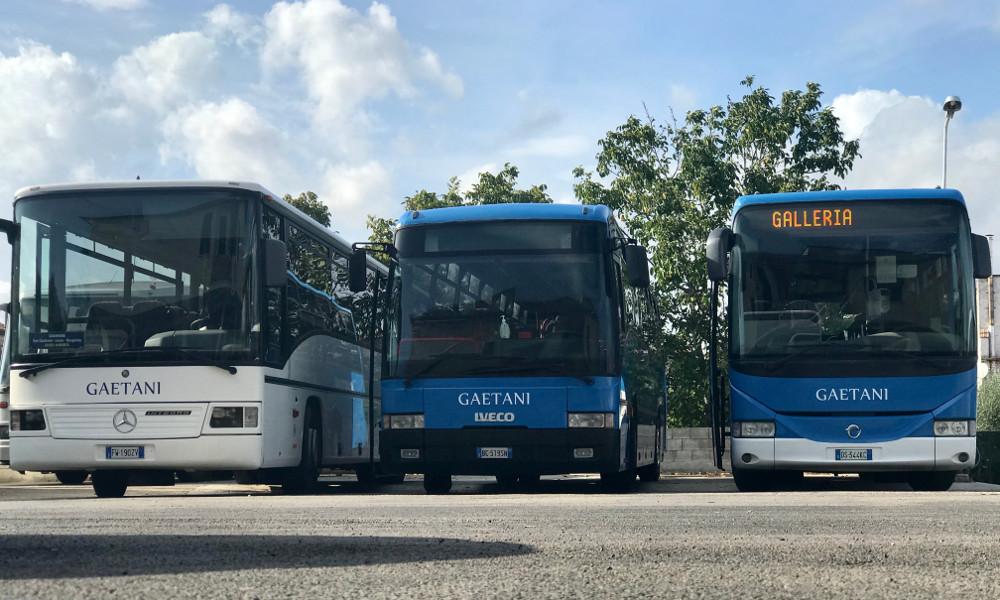 Bus_Linea
